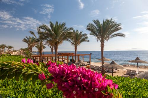 Egipt lato 2021